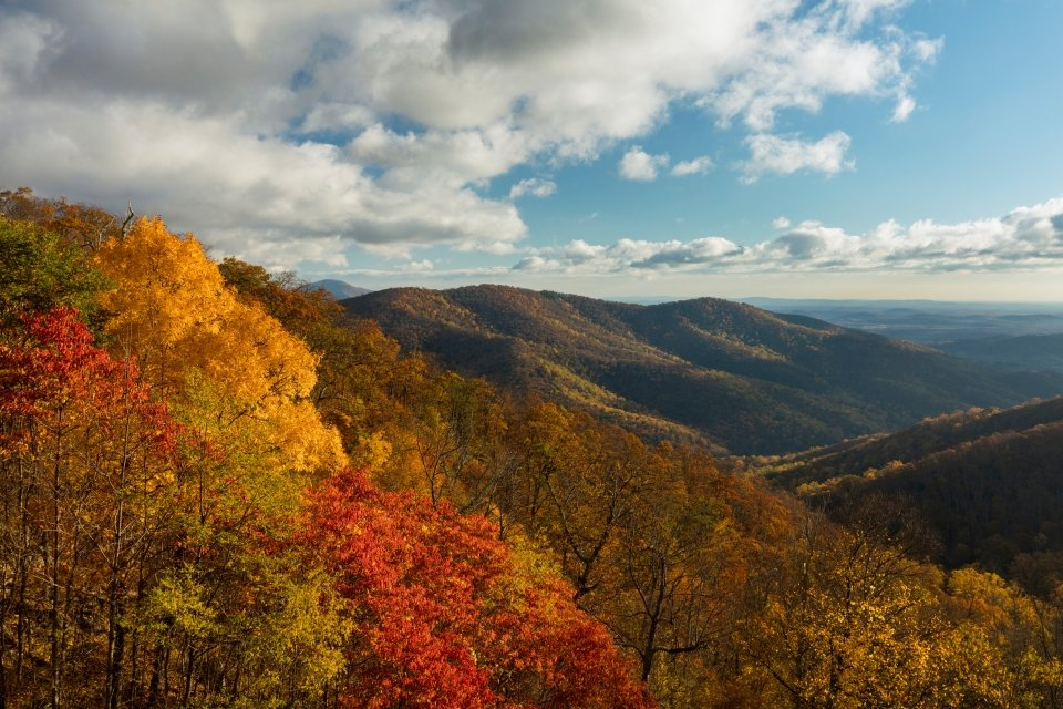 Bright red and yellow trees frame this view of a forested mountain ridge with a valley beyond.