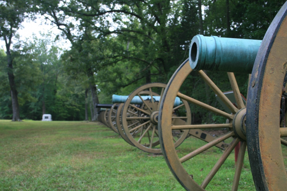 A line of canons overlook a field surrounded by tall trees at Shiloh National Military Park.