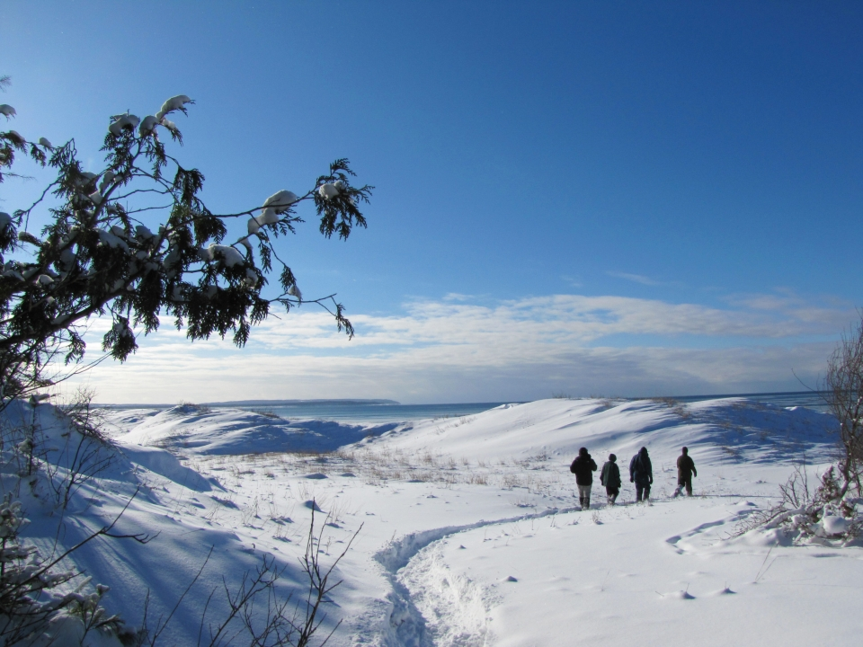 Four people showshoeing through a snow-covered Sleeping Bear Dunes National Lakeshore