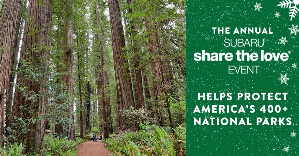"On the left: a picture of a group of park visitors exploring the Redwood forest. On the right, text that reads: ""The Annual Subaru Share the Love Event Helps Protect America's 400+ National Parks"""