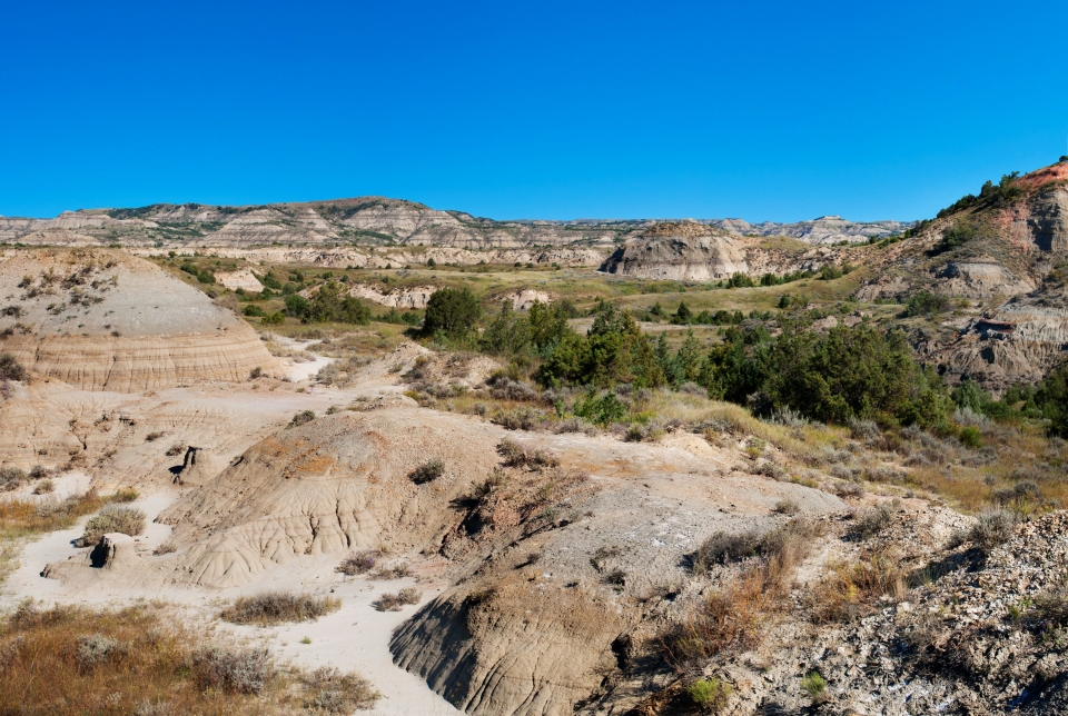 Spots of green trees amongst the tan and red sandstone formations of Theodore Roosevelt National Park