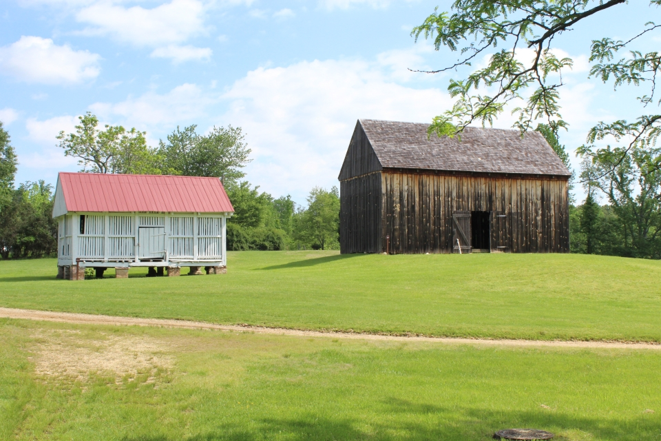 Red and white corn crib and brown tobacco barn at Thomas Stone National Historic Site