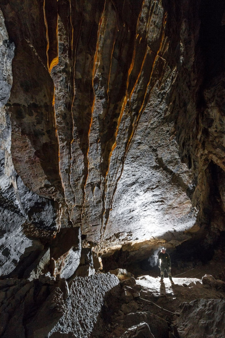 A park ranger stands below the massive bacon draperies in the Tank Room of Hansen Cave at Timpanogos Cave National Monument