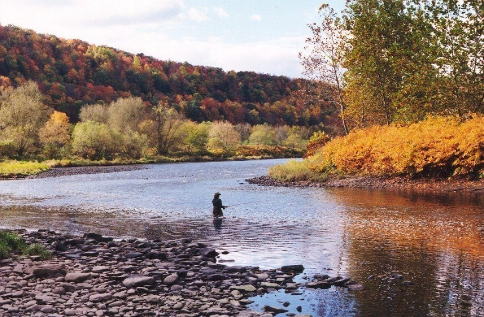 A park visitor stands in a calm river, fly fishing, in autumn