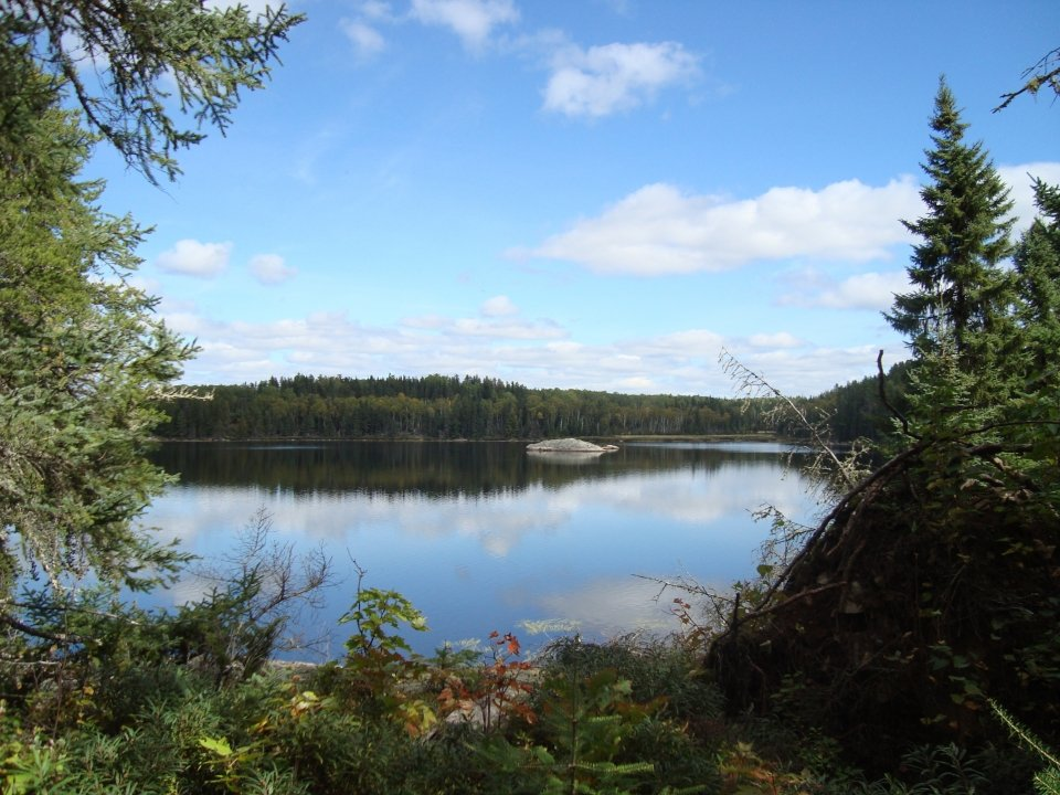 View from a campsite in Voyageurs National Park