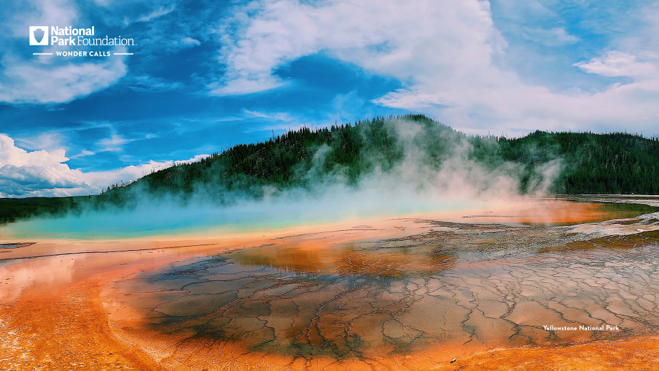 An orange geyser is topped with a smoky mist. In the background, lush green trees can be seen