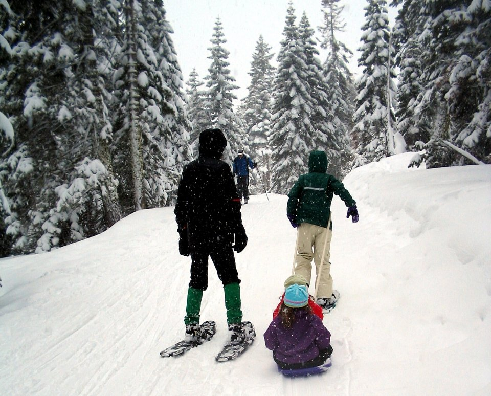 A family goes snowshoeing on a snow-packed pathway through evergreen trees, their branches laden with snow.