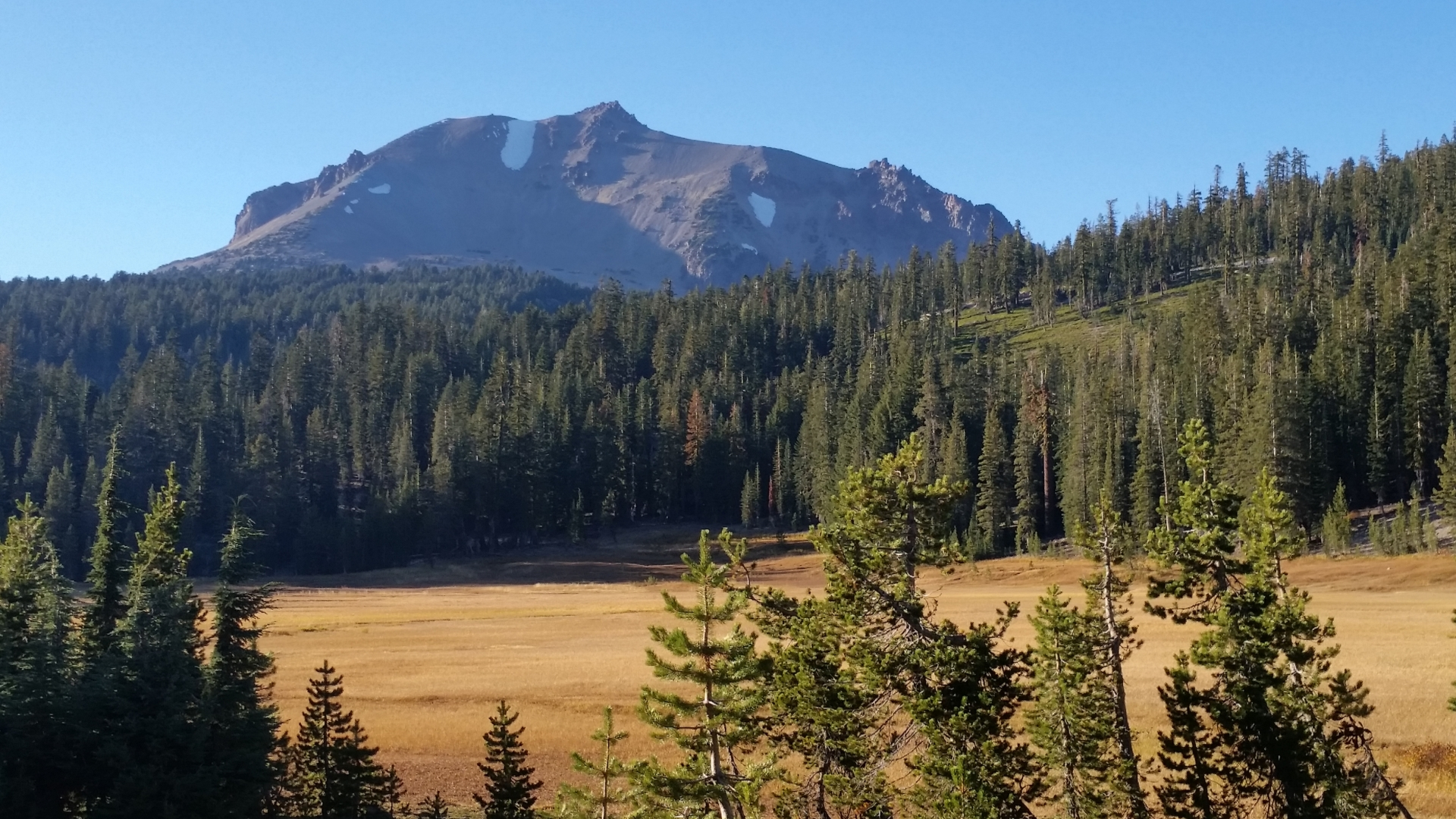 Lassen Mountain with a beautiful meadow with fall colors.