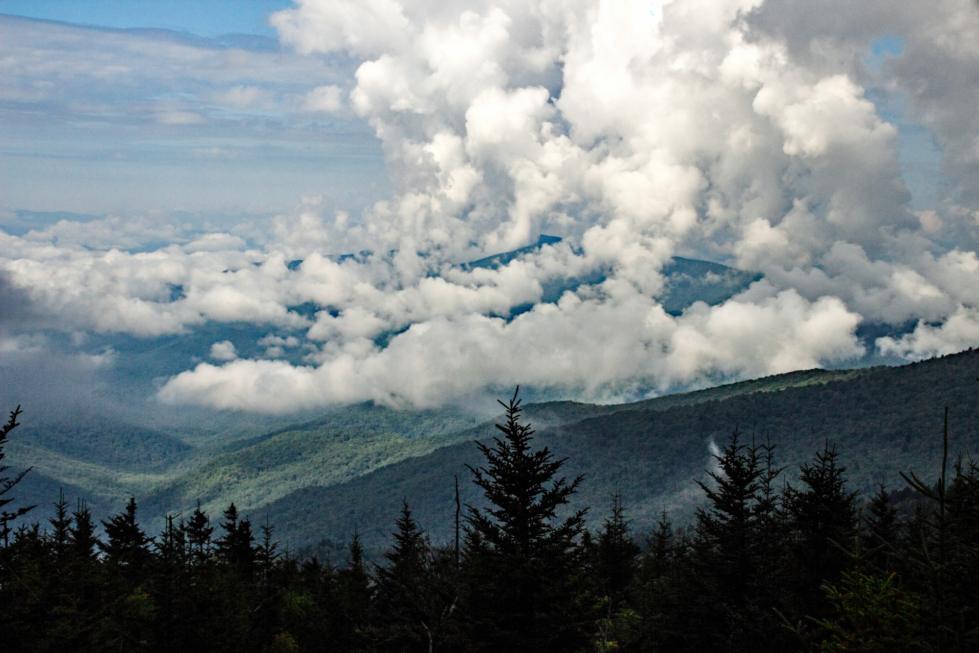 Clouds form after rain at Clingmans Dome