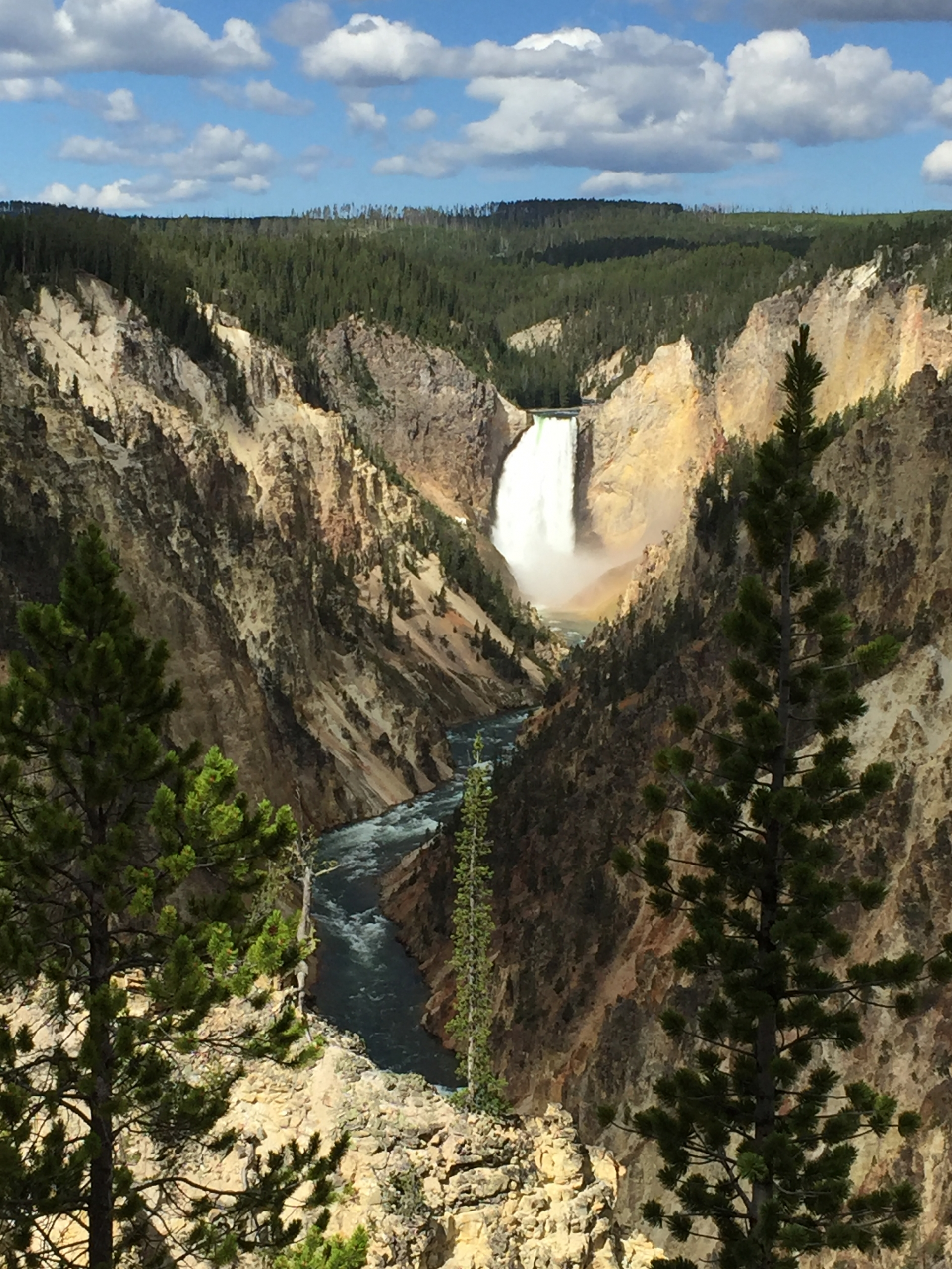 View of Lower Falls of the Grand Canyon of the Yellowstone