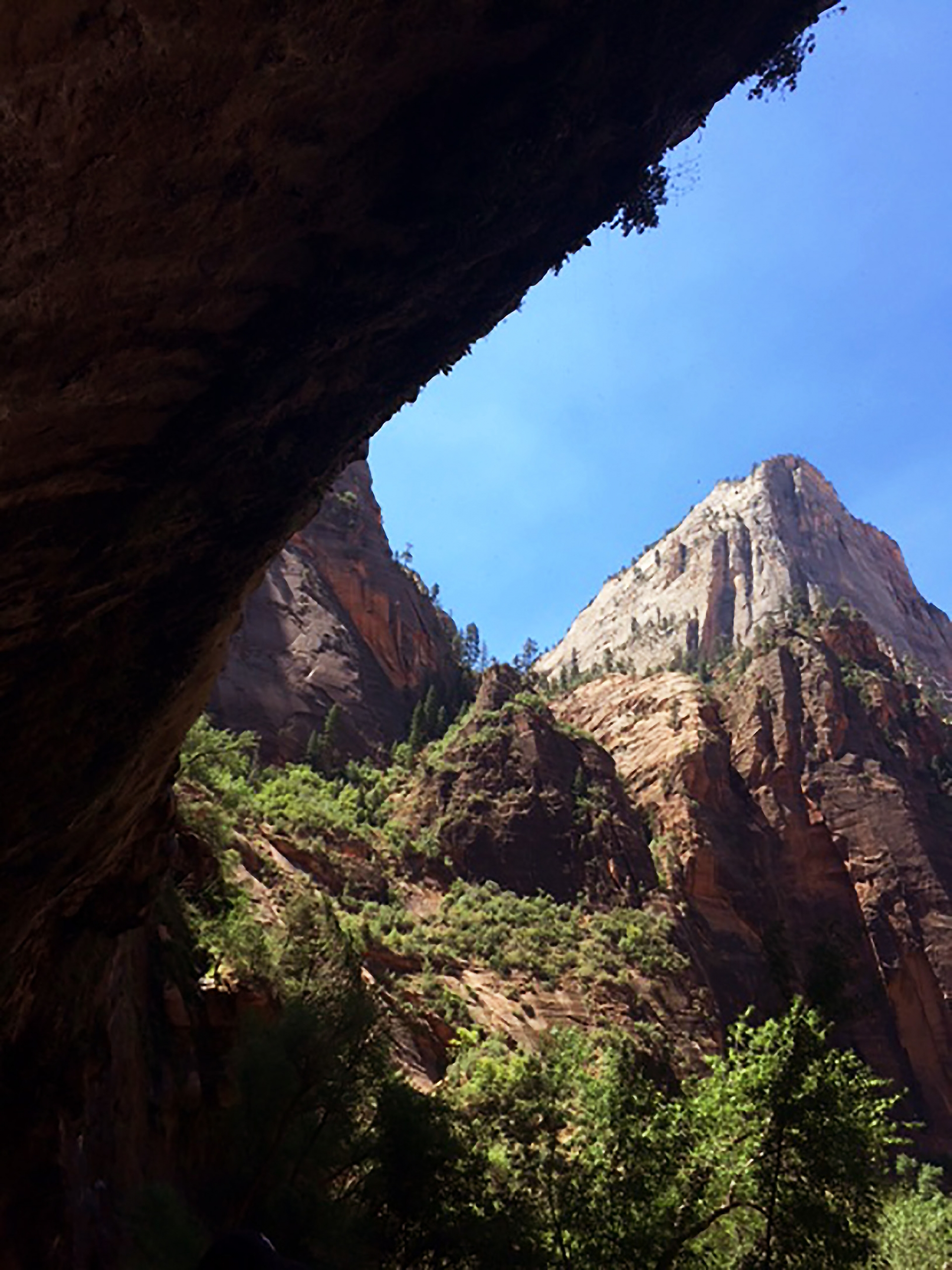 View from Zion Canyon's Weeping Rock