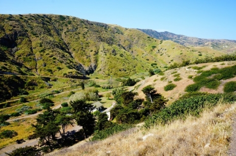 Green hills at Scorpion Canyon