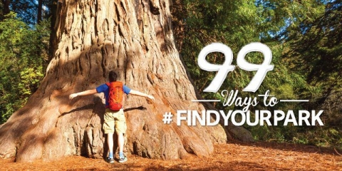 "Man hugging wide tree trunk, text reads ""99 Ways to #FindYourPark\"""