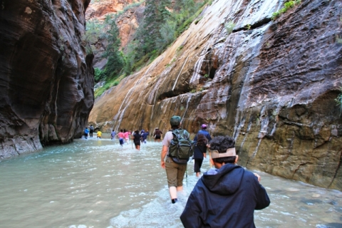 Students walking in river