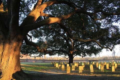 Over 14,000 headstones serve as the final resting place for American veterans at Chalmette National Cemetery