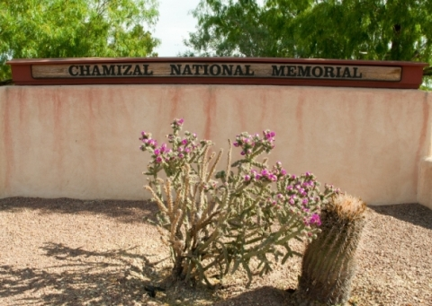 Flowering cactus in front of Chamizal National Memorial sign