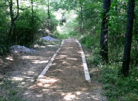 Wooded trail at Cuyahoga Valley National Park