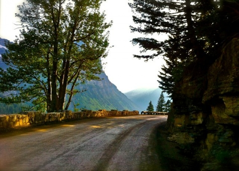 "Mountain road lined with pine trees, the ""Going-to-the-Sun Road"" in Glacier National Park"