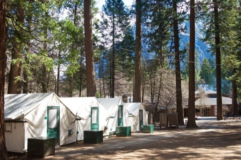 Tents at Half Dome Village Lodge in Yosemite National Park