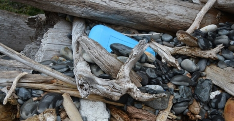 Image of Alaskan debris on pebbles