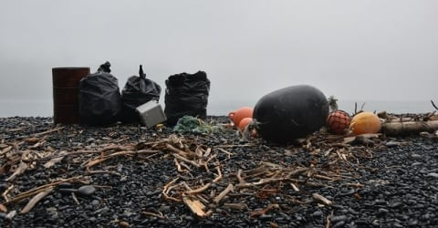 Image of Alaskan debris and collection tools on pebbles