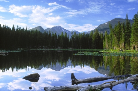 Rocky Mountains, trees and blue skies reflecting in still waters of lake.