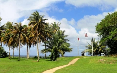 Tall palm trees and three flag poles with flags displayed at the War in the Pacific National Historical Park