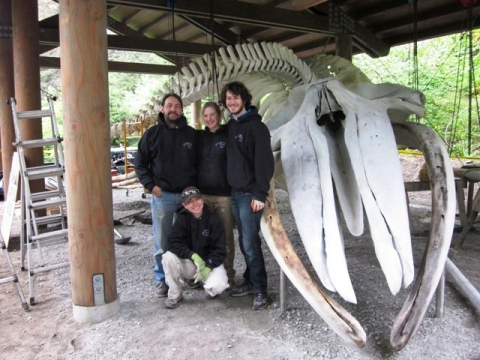 Dan DenDanto and his crew from Whales and Nails, LLC in front of bones