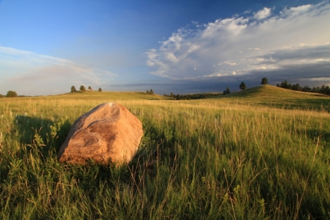 Tall grass and rock on plains of South Dakota