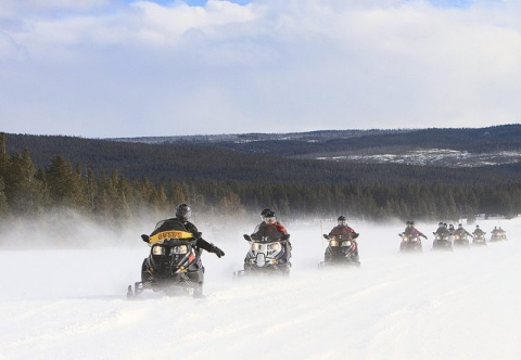People snowmobiling at Yellowstone