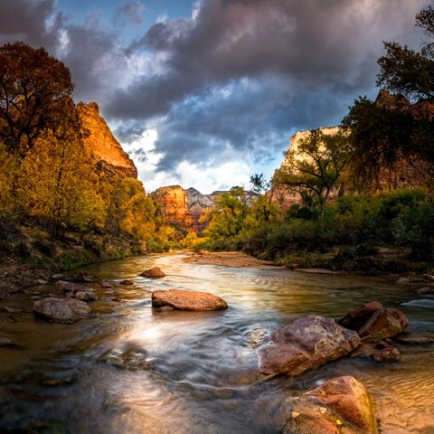 Stream in canyon at Zion National Park