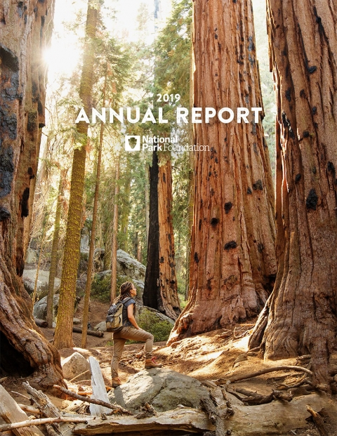 NPF annual report cover FY2019