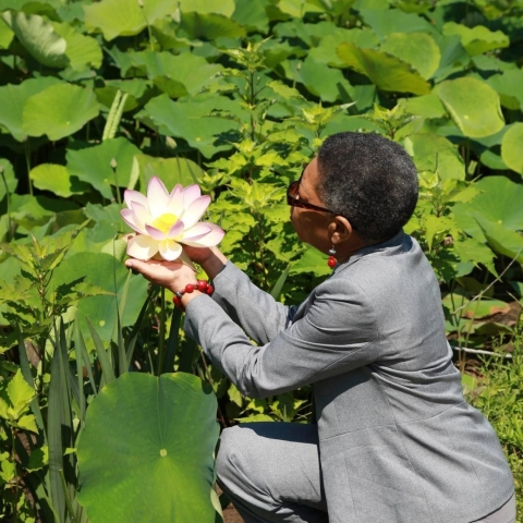 Audrey Peterman kneels down and cradles a lotus blossom in her hands