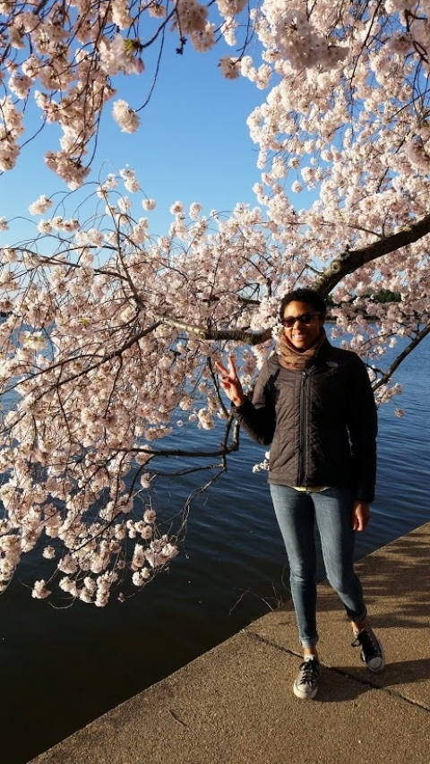 Young female stands next to blooming cherry blossom