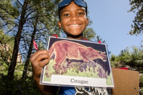 Child holds picture of cougar