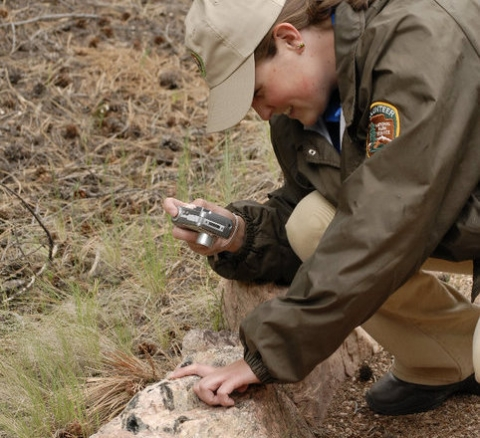Volunteer at Florissant Fossil Beds National Monument taking a photo of a fossil on the ground