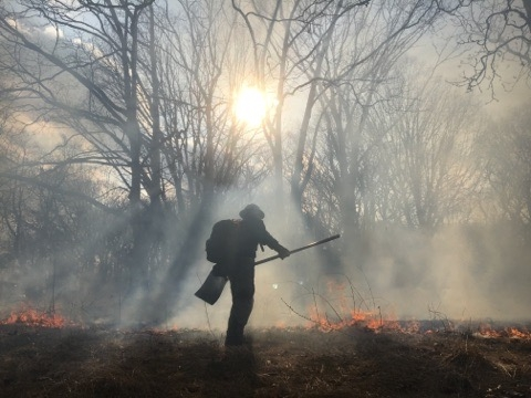 A firefighter holds the line, surrounded by smoke, in a prescribed burn