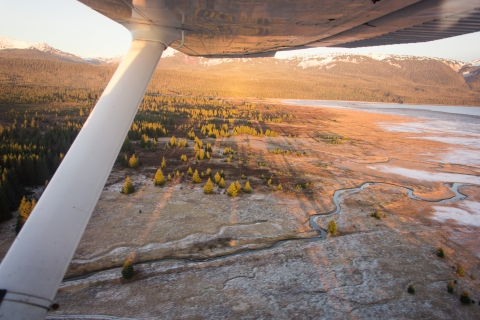 Gustavus from the sky, Glacier Bay National Park and Preserve