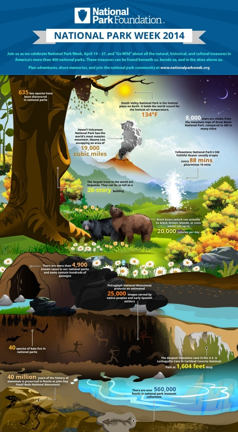 National Park Infographic
