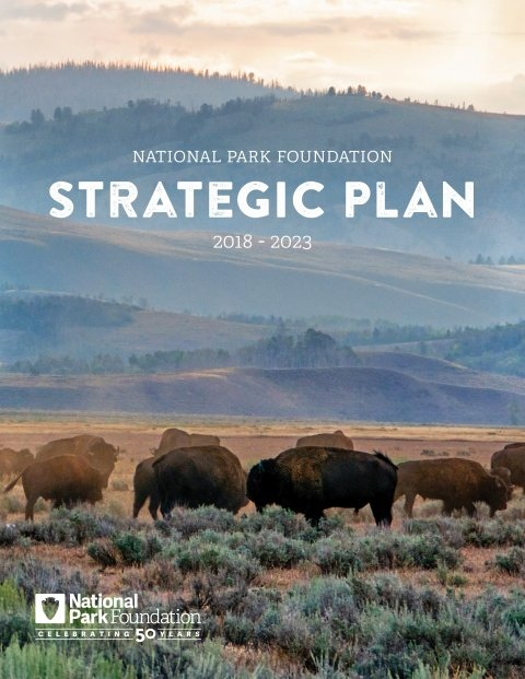 NPF strategic plan cover image