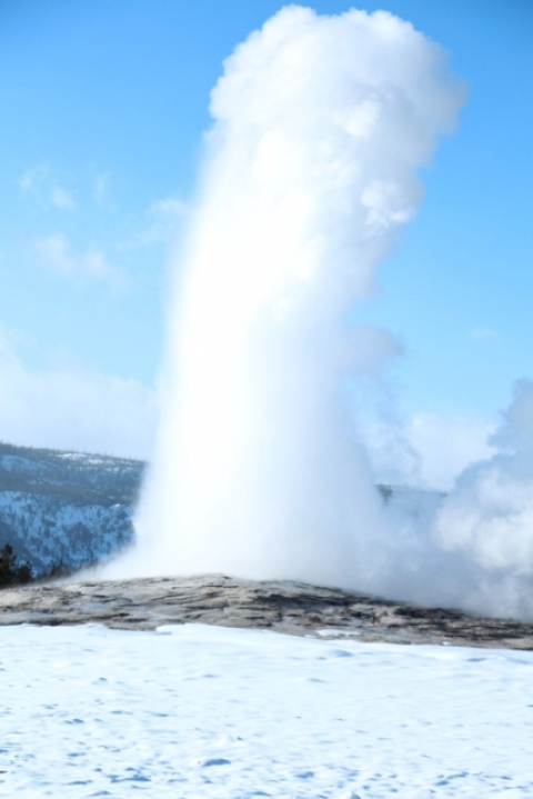 Old Faithful erupting