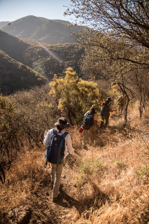4 people hiking on a trail at the Santa Monica Mountains National Recreation Area
