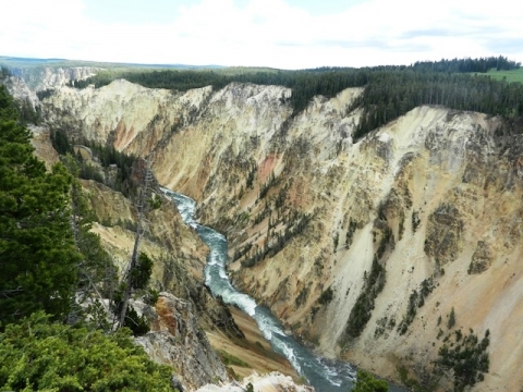 Image of a flowing river in Yellowstone National Park