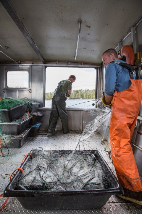 Yellowstone National Park staff in a boat with a bucket of fish for their invasive species programs