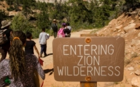 Wooden Zion National Park sign